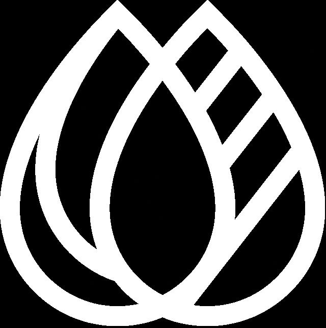 filigrane du logo de BioChar Boréalis